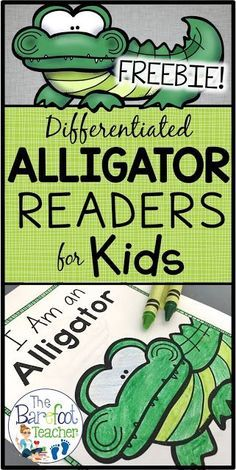 These FREE non-fiction, differentiated readers will go right along with the other activities, crafts, and ideas you have planned for your class this spring. Help your Kindergarten or First Grade students develop confidence in their reading abilities while learning about alligators at the same time. In addition, the last page of each reader incorporates writing practice as students recall facts that they learned in the reader.