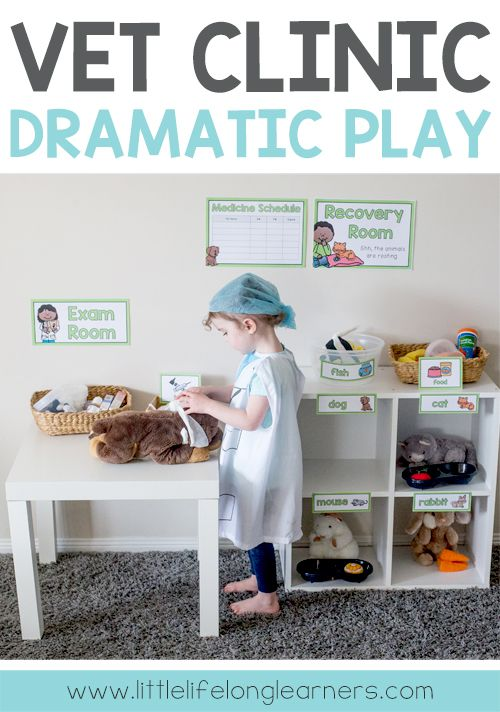 Vet clinic dramatic play area | Ideas for setting up a vet clinic imaginative play area at home or in the classroom | Prep and Foundation teaching ideas | Play ideas for toddlers and preschoolers | Totschool and homeschooling |