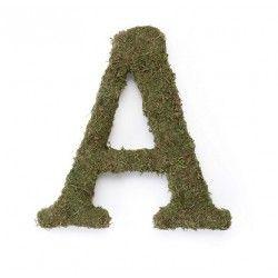 Lettere Alfabeto Muschio- 38h cm