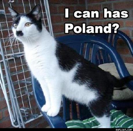 Hitler cat...