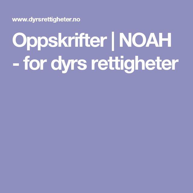 Oppskrifter | NOAH - for dyrs rettigheter