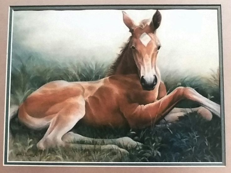 Foal Painting in Colored Pencil and Pastels by Laurel Uhlig, based on a painting by James Crow.