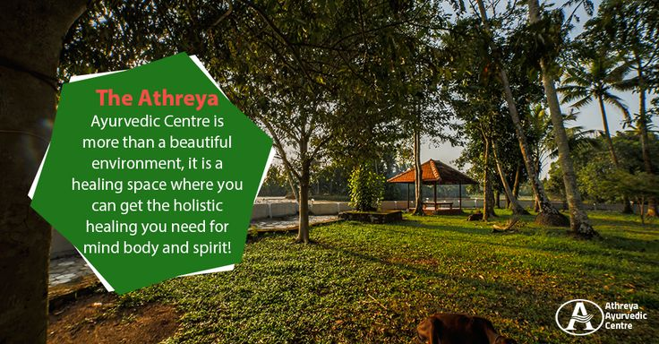 The Athreya Ayurvedic Centre is more than a beautiful environment, it is a healing space where you can get the holistic healing you need for mind body and spirit! . . . #health #fitness #nature #meditation #peace #beauty #green #ayurvedic #yoga #calm #accommodations #fields