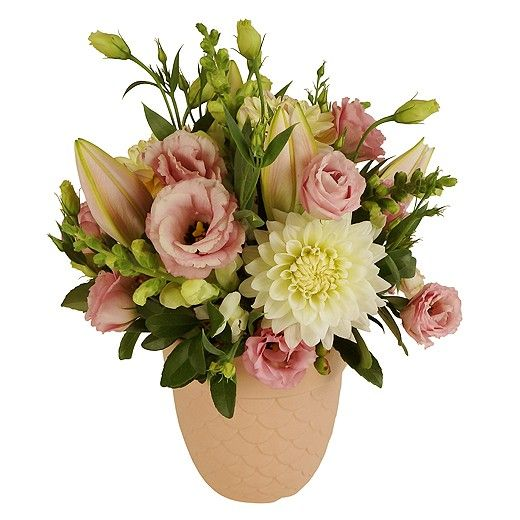 Coconut Ice Flower Arrangement - Auckland Delivery Only - Bestow the Florist Howick, Auckland