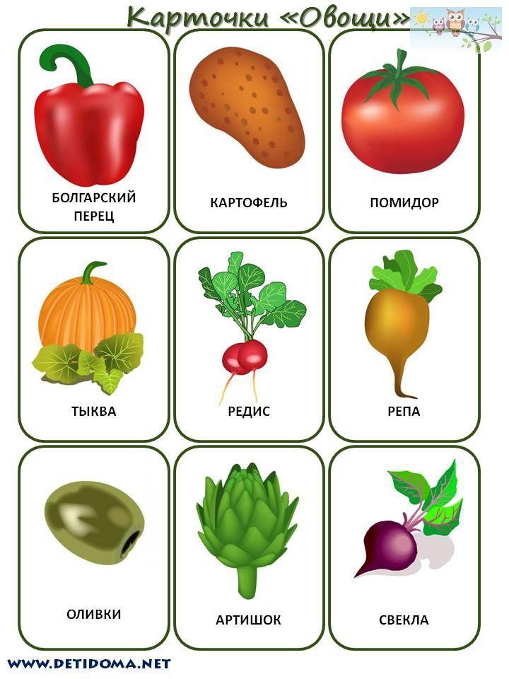 """Дети Дома detidoma.net: Дидактические карточки для детей """"Овощи"""""""
