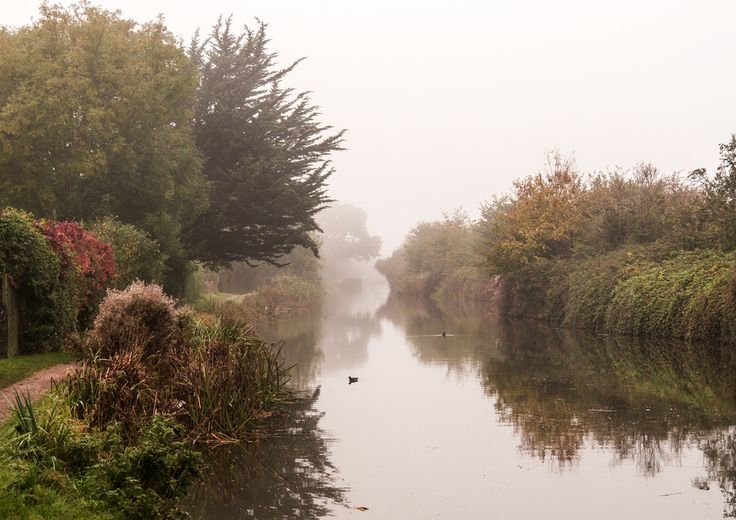 Chichester canal at Hunston
