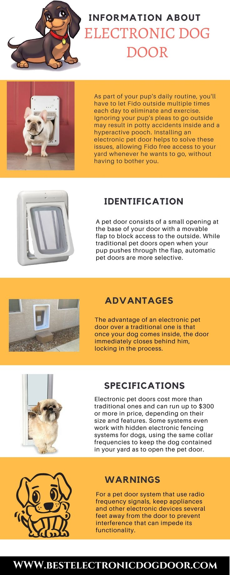 How To Install A Doggie Door In A Wall Know The Best Way Dog Door Installation Pet Door