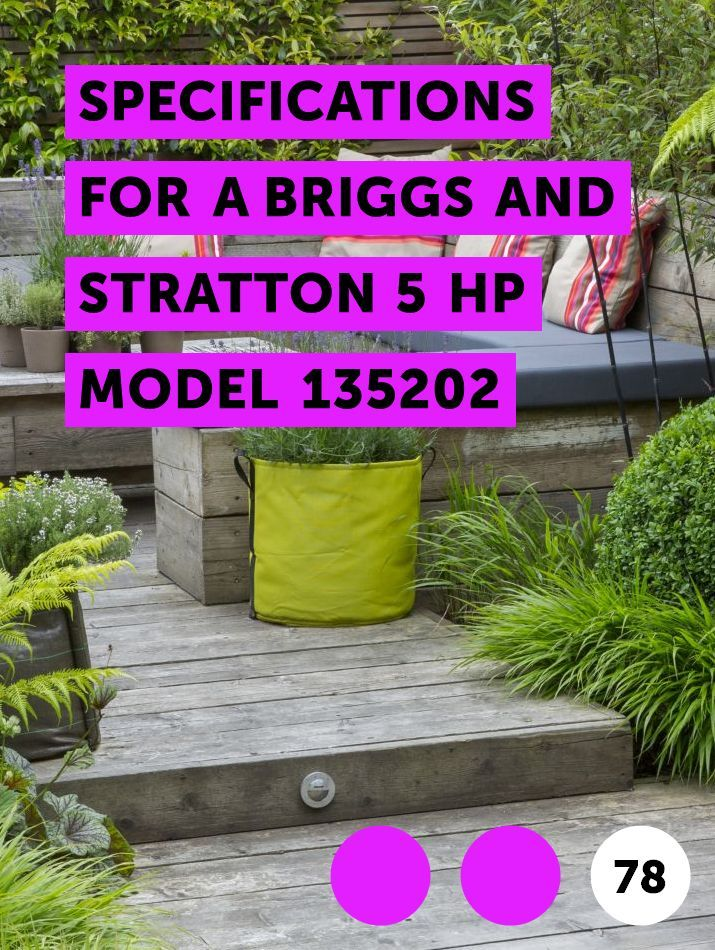 Specifications For A Briggs And Stratton 5 HP Model 135202