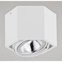 Plafon 1x48W G9 Biały ESPRESSO 3302 Argon