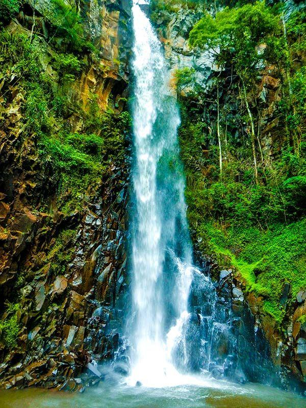 A Cachoeira dos Quatis fica em meio a exuberante vegetação da Mata Atlântica. Tem 46 metros de queda livre, e uma piscina natural onde é possível banhar-se. O acesso se dá por uma das mais belas trilhas de Brotas, no estado de São Paulo, Brasil, em 1.500 metros de extensão ao lado de incríveis árvores, remanescentes centenárias da Mata Atlântica no Relevo da Costa.
