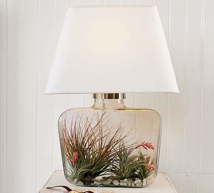 8 best DIY terrarium lamp and air plants images on Pinterest | Air ...