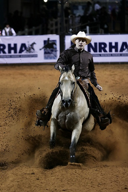 Reining Nations Cup 2009 (2) by shaltrin, via Flickr
