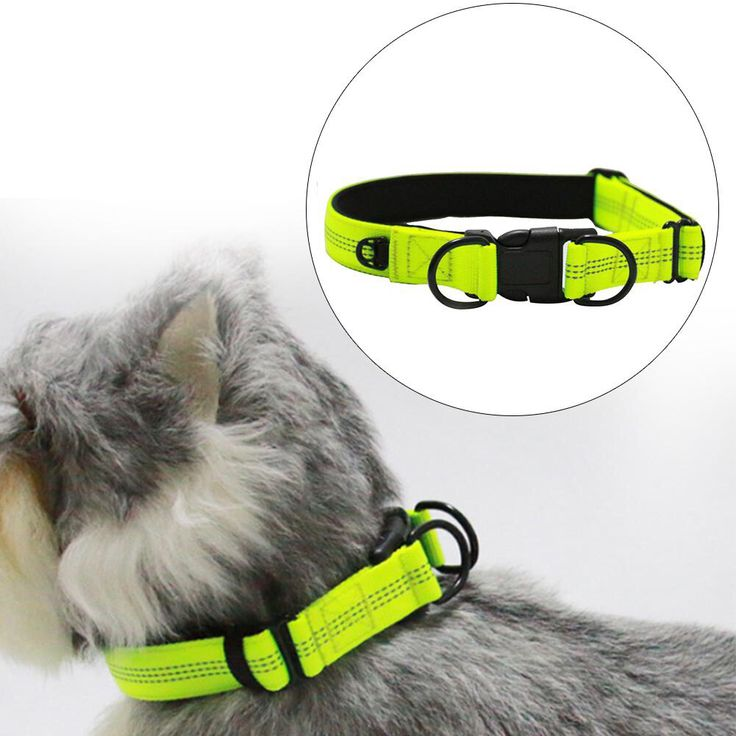 Adjustable Buckle Collar Personalized dog collars