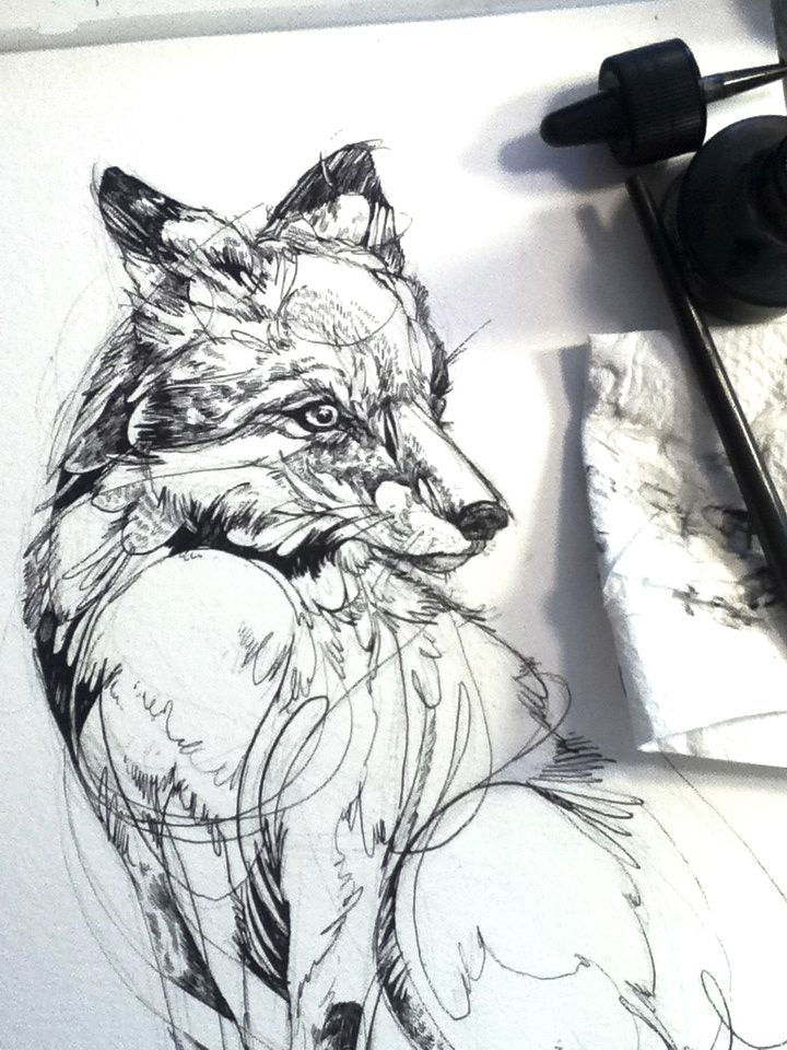 Fox Flow, inking progress.
