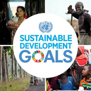 United Nations Sustainable Development Goals: The new Sustainable Development Goals are 17 Goals to Transform Our World.