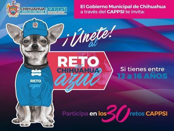 <p>Chihuahua, Chih.- El Gobierno Municipal a través del Centro de Atención y Prevención Psicológicas (CAPPSI) lanzará este