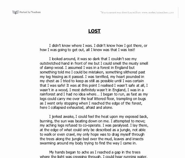 Descriptive Narrative Essay Example Lovely Lost Writing Gcse English Mar Of Examples Sample A Outline With Introduction Body And Conclusion Pdf