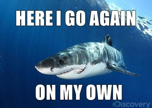 Shark Week. | 20 Things America Has Actually Done Right