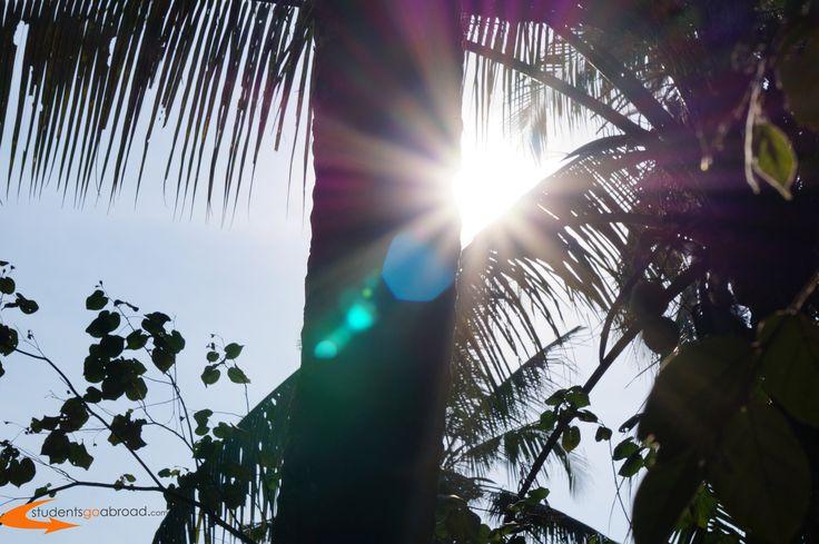 #Paradise #Volunteer in #Bali