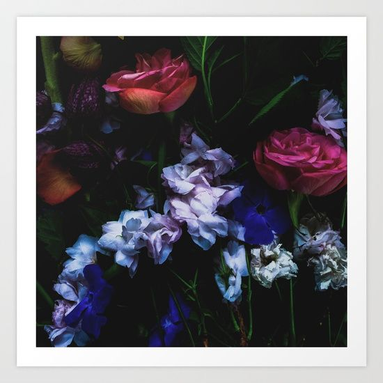 Collect your choice of gallery quality Giclée, or fine art prints custom trimmed by hand in a variety of sizes with a white border for framing. Floral photography for lovely home decor- By Herself Designs