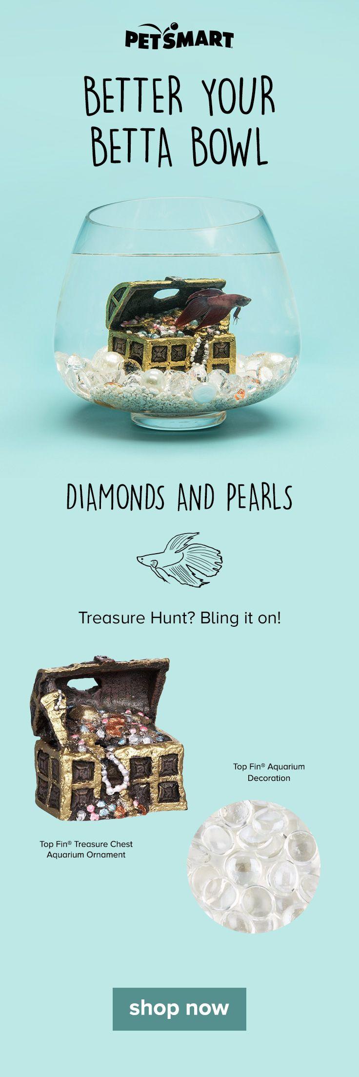 Freshwater fish for aquarium petsmart - Top Fin Treasure Chest Aquarium Ornament At Petsmart Shop All Fish Ornaments Online