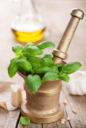 Friss fűszerek télre is - Olasz pesto és francia pistou - 100fok