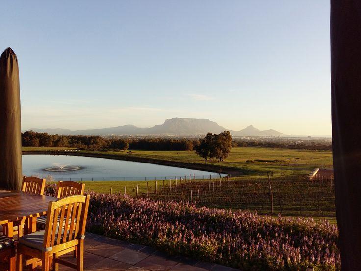 Breathtaking views at De Grendel