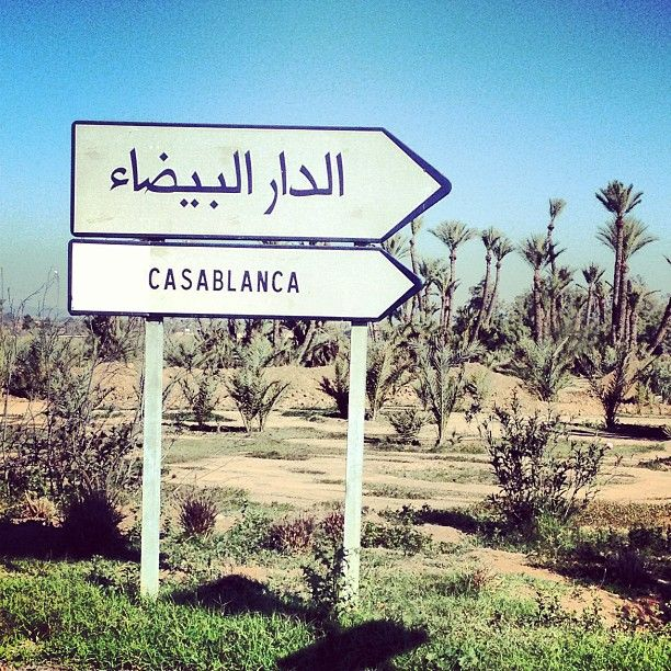 Casablanca, Morocco // en route to // moroccan sign // street sign // African desert // cactus // exotic travel destinations // dream vacations // places to go