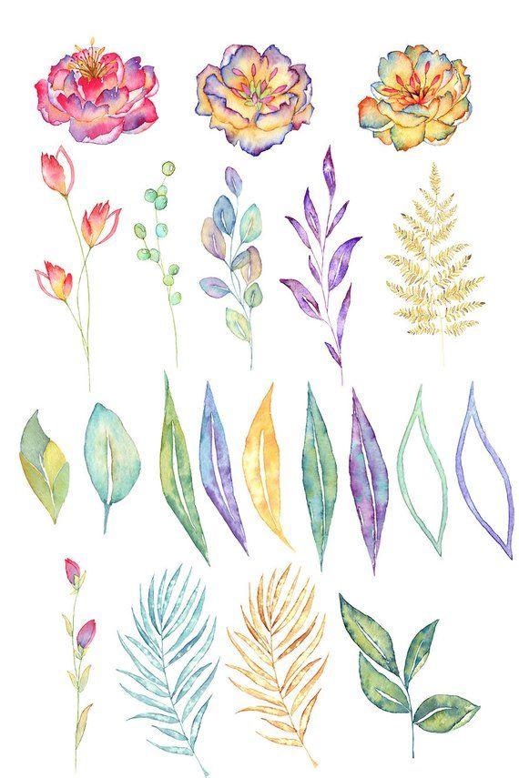 Tropical Floral Watercolor Clipart Rainforest Clipart Rainbow