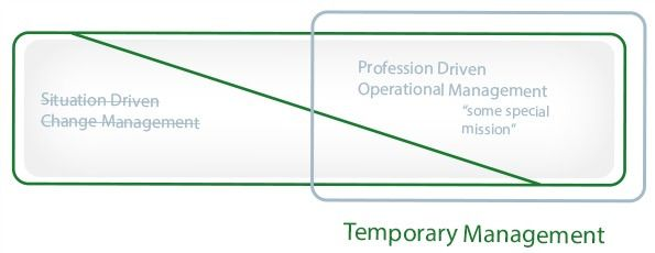 Temporary Management Professional Driven And Operational Management Management Project Finance General Management