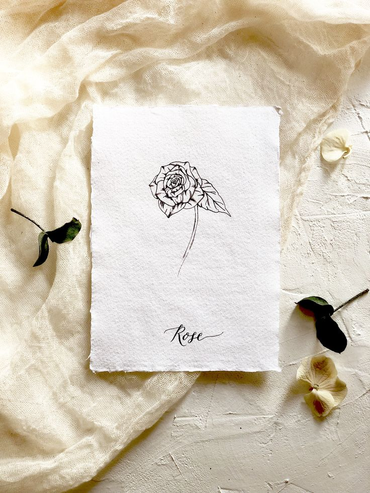 Botanical illustration art print. Modern florals. The Rose-flower of love