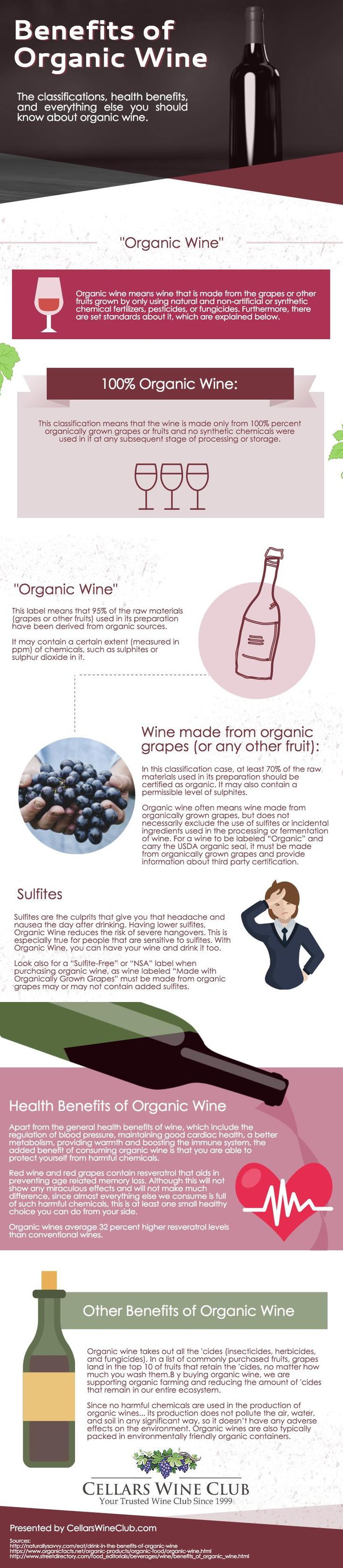 [infographic] classifications, health benefits, and everything else you should know about organic wine.