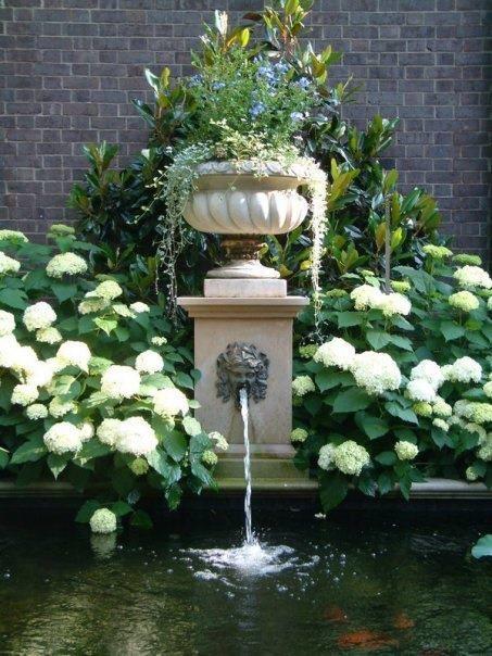 725 Best Beautiful Hydrangea Garden Images On Pinterest | White Hydrangeas,  Gardens And Flowers