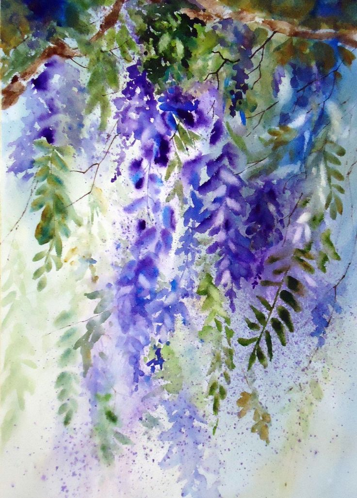 loose watercolor images | Loose w/c of the beautiful wisteria in blues and purple 16x20