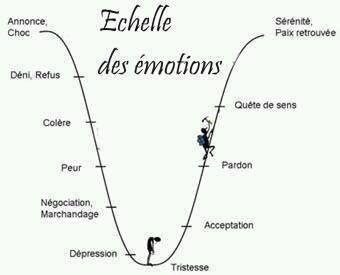Schéma sur le processus de résilience suite à un choc émotionnel.