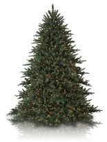 most realistic artificial christmas trees balsam hill - Most Realistic Christmas Trees