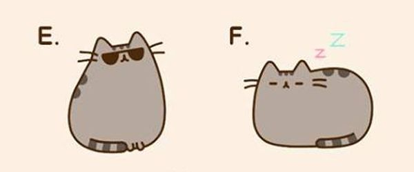 Hardest Decision EVER: Which of These Pics Should Pusheen Use for Her Book?