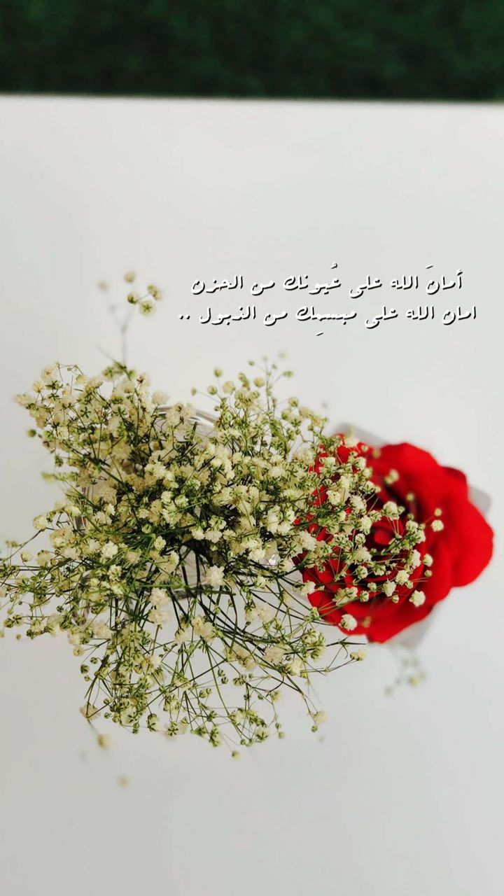 Pin By Salma On Salma Flowers Love Words Qoutes