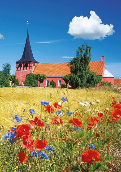 Bornholm, Denmark is an island in the Baltic Sea. It's a well known vacation spot for northern Europeans. I like the Icelandic poppies, and there's a large arts and crafts community, mostly glassmaking and clay. And the island hosts the largest medieval fortress in northern Europe. Gotta go pack...