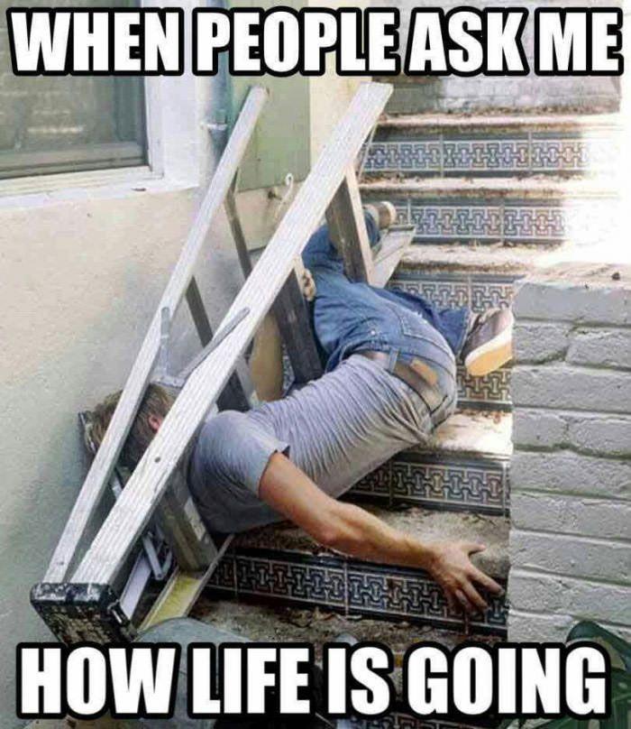 59a6e4c3614851a319adc800c35f0892 so funny funny memes the 25 best ouch meme ideas on pinterest dares, best burns and