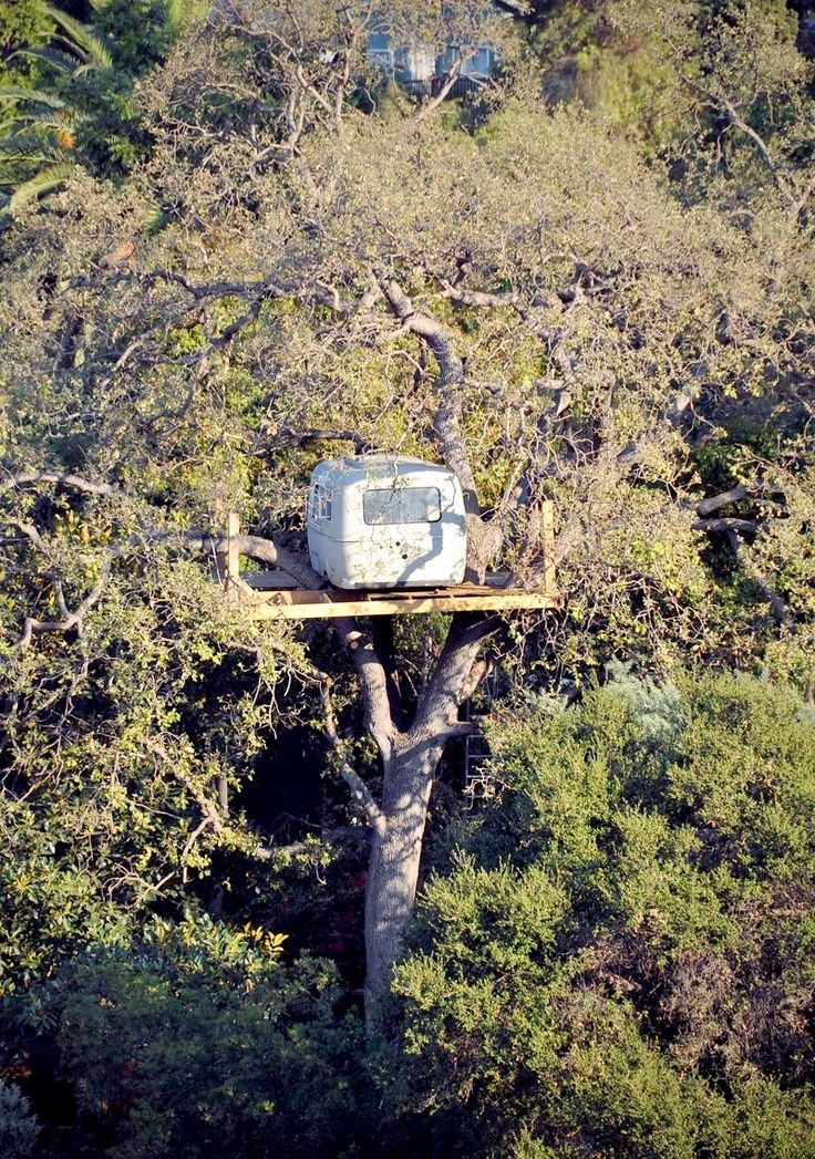 Yes, it's an Airstream trailer in an oak tree, 30 feet off the ground, in a secret location near L.A. | Tiny Homes