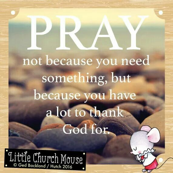 ✞♡✞ Pray not because you need something, but because you have a lot to thank God for. Amen...Little Church Mouse 14 April 2016 ✞♡✞