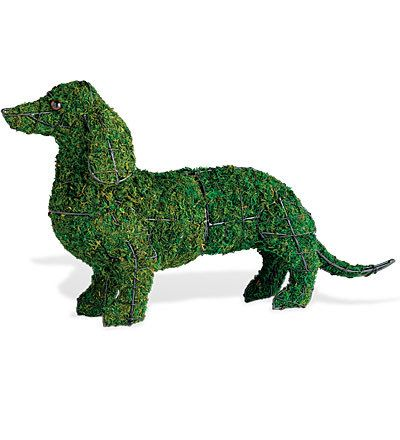 Dachshund Topiary Dog Sculpture Dog Garden Topiary