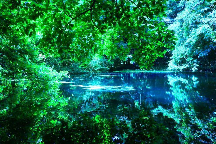 """まつたけ@みかん箱で日本一周 終了 on Twitter: """"27日目 山形県 丸池様 七色に姿を変える湧き水…"""