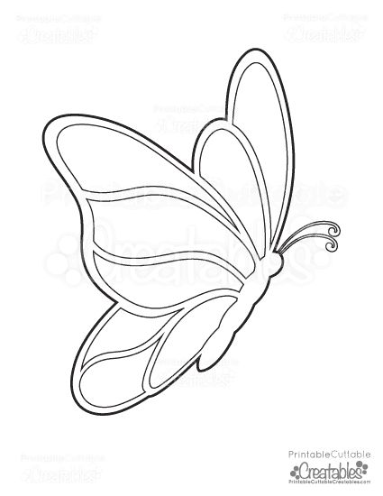 76 best Butterfly Lesson Plan Ideas images on Pinterest