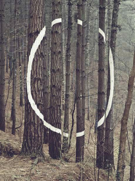 """""""El Bosque de Oma"""" ~ AGUSTiN IBAROLA 1985 http://www.nomad-chic.com"""