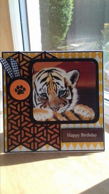 I made this using Spellbinders geo die and Pollyanna Pickering Wild at heart topper.