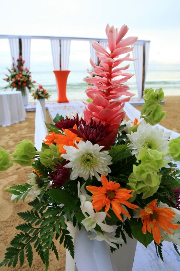 Best tropical caribbean wedding images on pinterest