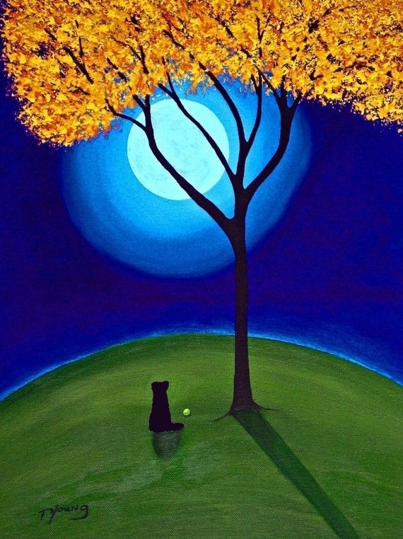 The cat and the moon.