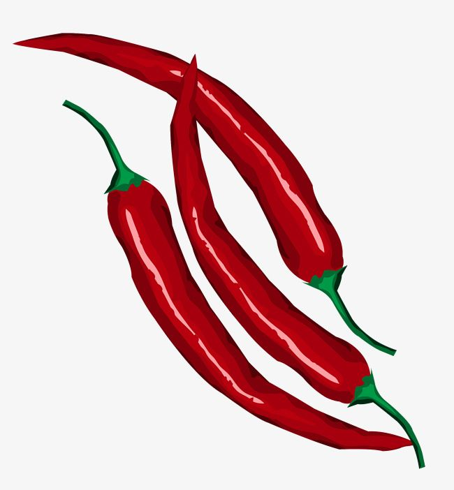 Red Hot Chili Vector Png And Vector Hot Chili Chili Red Hot